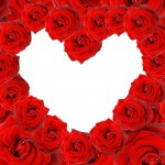 valentine-roses-backgrounds-6